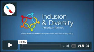Inclusion and Diversity at American Video
